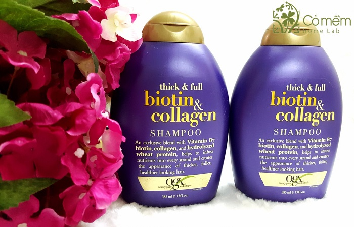 Dau goi Thick and Full Biotin and Collagen