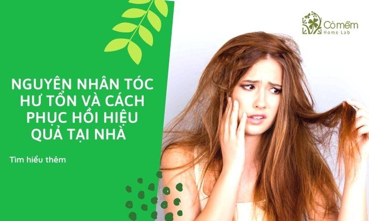 Tiết lộ nguyên nhân và và 6 mẹo giải cứu tóc hư tổn tại nhà