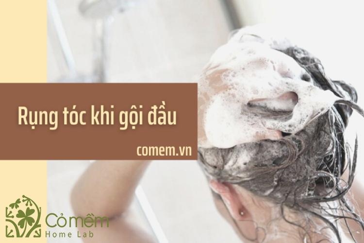 Nguyên nhân gây rụng tóc khi gội đầu và cách khắc phục